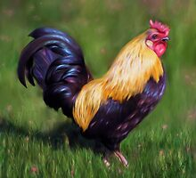 Stuart the Bantam Rooster by Michelle Wrighton