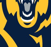 California Golden Bears Sticker