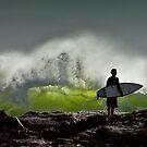 On the Edge by Ann  Van Breemen
