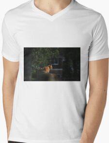 Ginger cat on garden fence Mens V-Neck T-Shirt