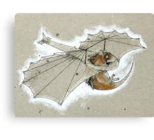 Ratglider Canvas Print