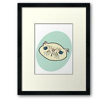 Sad Cat Framed Print
