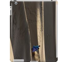 Desert Fun iPad Case/Skin