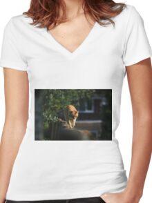 Ginger cat on garden fence Women's Fitted V-Neck T-Shirt