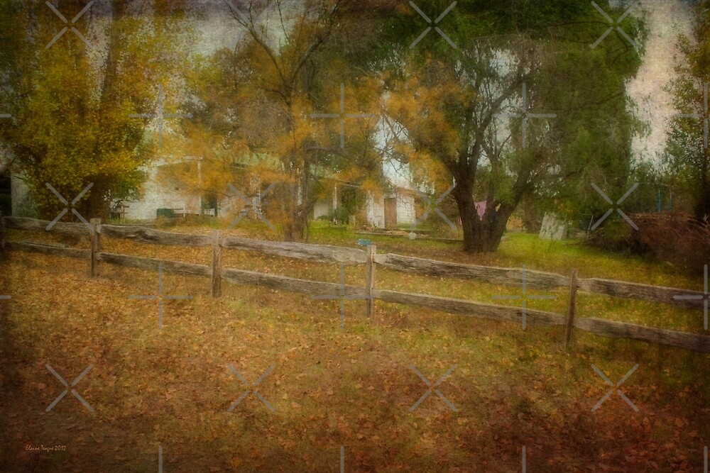 The Garden Fence by Elaine Teague