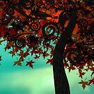 Autumn Fire by Stephanie Rachel Seely