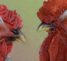 Hen & Rooster Sticker