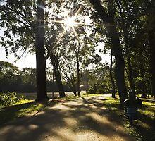 Ibirapuera Park - Sun by gallfreitas