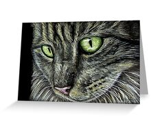 Intense Tabby Cat Pastel Painting Greeting Card