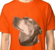 Ginger  Classic T-Shirt