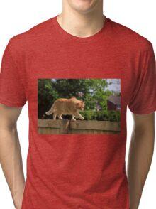 Ginger cat on garden fence Tri-blend T-Shirt