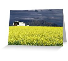 Sunshine After the Storm Greeting Card