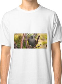 Black currawong resting on a tree branch Classic T-Shirt