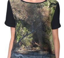 Shoreline Coniferous Chiffon Top