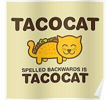 Tacocat Poster
