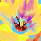 Yellow Tulip by Vitta
