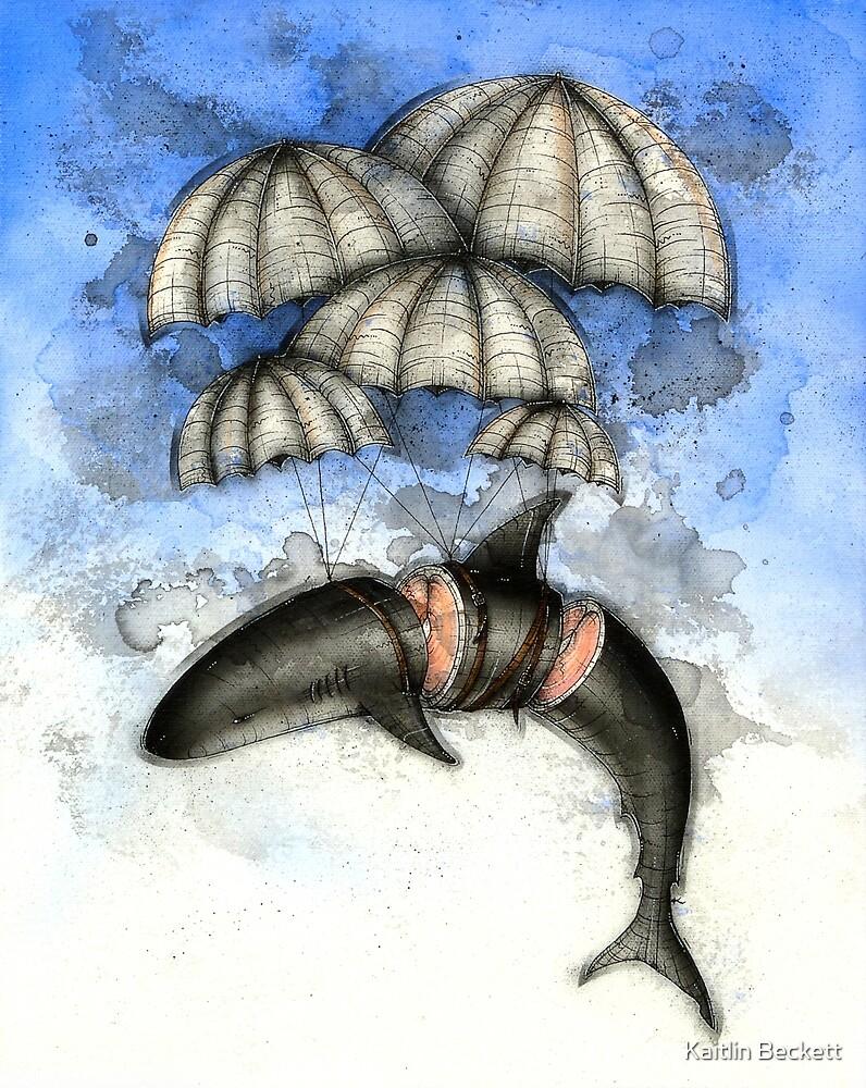 Floating Shark by Kaitlin Beckett