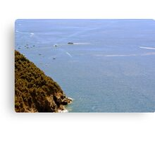 The sea and land from Vernazza. Canvas Print
