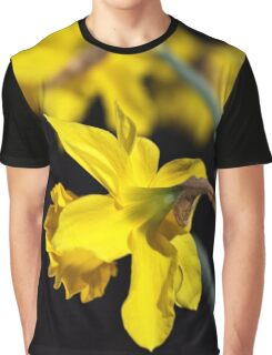 Spring Daffodils Graphic T-Shirt