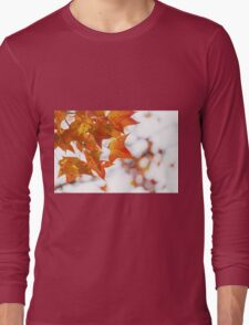 Red maple leaves in autumn Long Sleeve T-Shirt