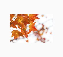 Red maple leaves in autumn Unisex T-Shirt