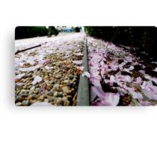 Petal Pink & Pebble Perspective Canvas Print