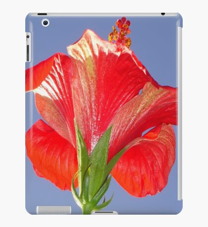 Side View of Scarlet Red Hibiscus In Bright Light iPad Case/Skin