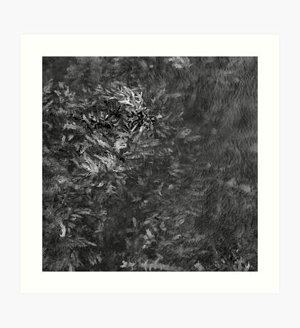 fsm 001 Art Print