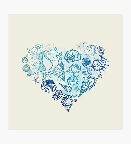 Heart of the shells. Photographic Print
