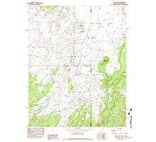 USGS TOPO Map Arizona AZ Red Valley 313075 1982 24000 Photographic Print