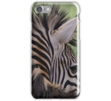 Zebra caught shy from behind iPhone Case/Skin