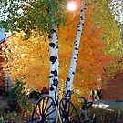 Autumn On The Ranch by © Loree McComb