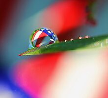 Patriotic Rain by Carolyn  Fletcher