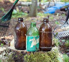 Weathered Bottles by Martha Medford