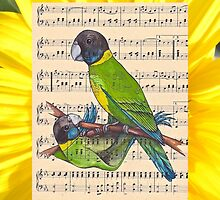 Woodland Whispers - Australian Ringneck Parrots by TwoShoes