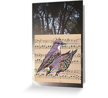 Woodland Whispers - Bronzewings Greeting Card