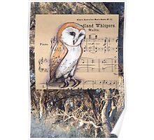 Woodland Whispers - Barn Owl Poster
