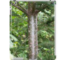 Fir Tree iPad Case/Skin