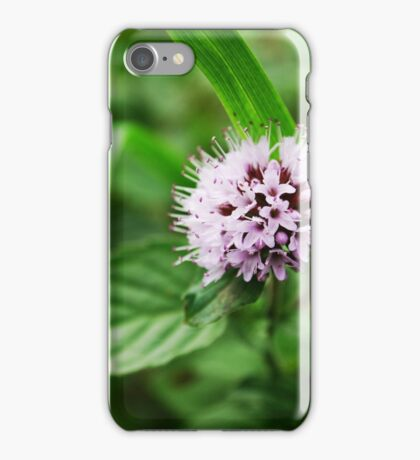 Clover Flower  iPhone Case/Skin