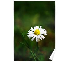 Daisy, Daisy. . . . Poster