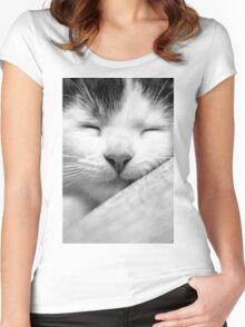 Sleeping kitten Women's Fitted Scoop T-Shirt