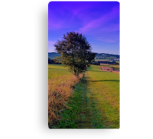 A lonely tree with some scenery around | landscape photography Canvas Print