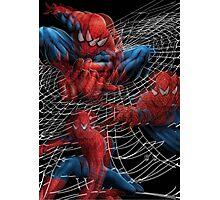Seeing a drunken Spider, oh man! Photographic Print