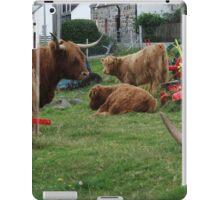 Highland Cows in Duirinish iPad Case/Skin
