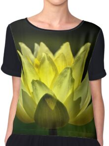 Yellow Water Lily, Backlit. Chiffon Top