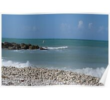 Waves at Fort Zach Poster
