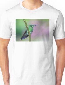 Green-Crowned Brilliant Hummingbird - Costa Rica T-Shirt