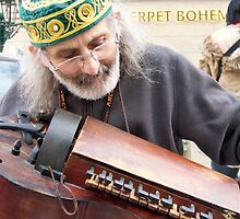 Hurdy Gurdy Man by phil decocco