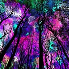 Magic forest by augustinet