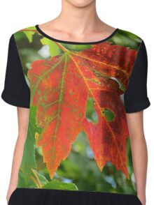 First sign of Autumn Chiffon Top